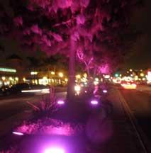 university-median-lighting.jpg